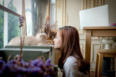 Маленькая девочка с милым котом Стоковые Фотографии RF