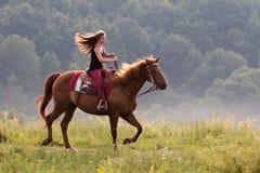 Маленькая девочка с лошадью Стоковое Изображение RF