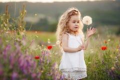 Маленькая девочка с одуванчиком на луге лета Стоковая Фотография RF