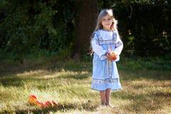 Маленькая девочка с яблоками стоковые фотографии rf