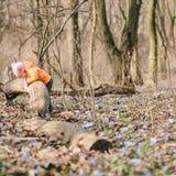 Маленькая девочка учит природу Стоковое Изображение
