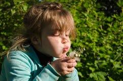 Маленькая девочка дуя одуванчик на солнечный день Стоковое Фото