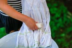 Маленькая девушка хелпера моет одежды в тазе outdoors Стоковые Фото
