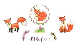 Маленькая лисица стоковые фотографии rf