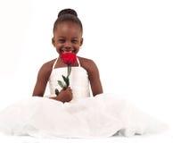 Маленькая невеста Стоковое Изображение RF