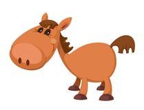 Маленькая лошадь Стоковые Изображения