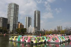 Маленькая лодка в парке Ueno Стоковое фото RF