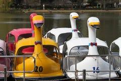 Маленькая лодка в парке Ueno Стоковое Изображение