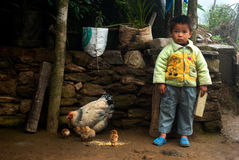 Маленькая семья мальчика и курицы Lepcha Стоковые Изображения