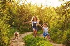 Маленькая сестра бежит с собакой Стоковая Фотография