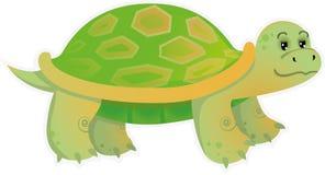 Маленькая черепаха бесплатная иллюстрация