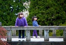 Маленькие девочки на мосте наслаждаясь природой Стоковое фото RF