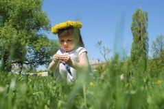Маленькие девочки сидя в поле в венке одуванчиков. Стоковые Изображения