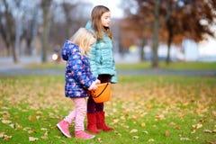 Маленькие девочки собирая жолуди для производить и играть на красивый день осени Стоковые Изображения