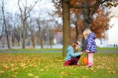 Маленькие девочки собирая жолуди для производить и играть на красивый день осени Стоковое Изображение RF