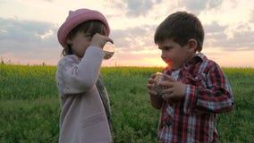 Маленькие милые ребенк, мальчик и девушка выпивают воду, детей гасят жажду, воду владением рук ` s ребенк стеклянную чистую чисто акции видеоматериалы