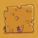 Маленькие мыши с сыром стоковые фотографии rf