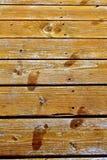 Маленькие ноги стоковая фотография
