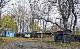 Маленькие дома в лесе Стоковые Изображения