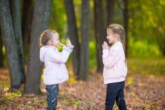 Маленькие прелестные девушки играя в красивой осени Стоковое Изображение