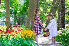 Маленькие прелестные девушки идя в пышный сад  Стоковые Фото