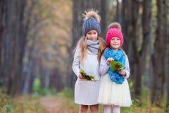 Маленькие прелестные девушки на теплом солнечном дне осени Стоковое Изображение
