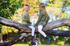 Маленькие прелестные девушки outdoors на теплом дне осени Стоковое фото RF