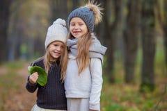 Маленькие прелестные девушки outdoors на теплом дне осени Стоковые Изображения
