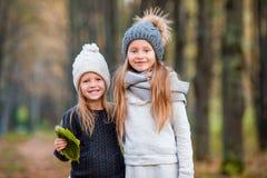 Маленькие прелестные девушки outdoors на теплом солнечном дне осени Стоковое Изображение