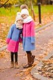 Маленькие прелестные девушки outdoors на теплом солнечном дне осени Стоковое фото RF