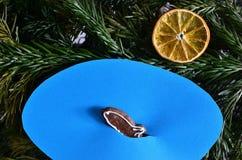 Маленькие рыбы и солнце Стоковые Фотографии RF