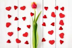 Маленькие сердца и тюльпан на день валентинок Стоковая Фотография RF