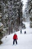 Маленькие лыжники Стоковое фото RF