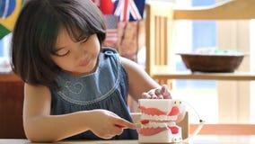 Маленький азиатский ребенок чистя поддельную челюсть щеткой сток-видео