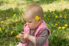Маленький младенец играя в парке на траве Стоковая Фотография RF