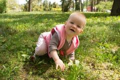 Маленький младенец играя в парке Стоковые Изображения RF