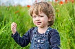 Маленький очаровательный младенец девушки идя на поле мака среди травы Стоковые Фото