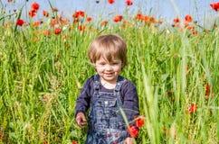 Маленький очаровательный младенец девушки идя на поле мака среди травы Стоковое Фото