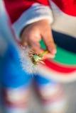 Маленький ребенок держа часы одуванчика Стоковые Фотографии RF