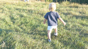 Маленький ребенок идет на зеленую траву на поле к его отцу на солнечном дне Счастливая семья на луге лета багги ребёнка заволакив Стоковая Фотография