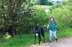 Маленький ребенок идя собака стоковые фото