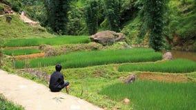 Маленький ребенок сидя около террасного поля риса Стоковые Изображения