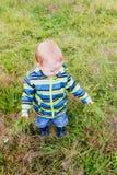 Маленький ребенок срывает траву Стоковая Фотография RF