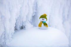 Маленький снеговик в шляпе и шарфе Стоковое Фото