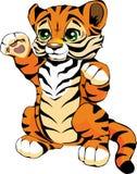 маленький тигр Стоковое Изображение RF