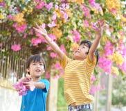 Маленький ход мальчика отпрыска цветет внутри к воздуху с усмехаться Стоковые Фото