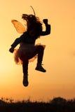 Маленький fairy силуэт Стоковые Фото