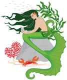 маленький mermaid Стоковое Изображение RF