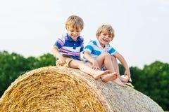 2 маленьких дети и друз с сеном штабелируют или тюкуют Стоковое Изображение