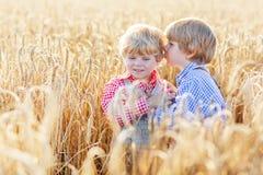 2 маленьких мальчика отпрыска имея потеху и говоря на желтой пшенице Стоковое фото RF